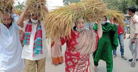 সারের জন্য এখন আর কৃষককে জীবন দিতে হয় না : সাংসদ হোসনে আরা বেগম